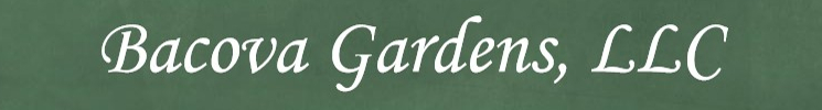 Bacova Gardens Website